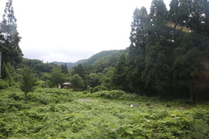f:id:kawaturu:20170904215529j:plain