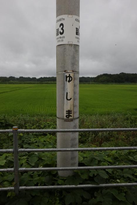 f:id:kawaturu:20171007173837j:plain