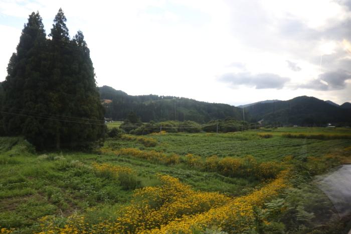 f:id:kawaturu:20171022171037j:plain