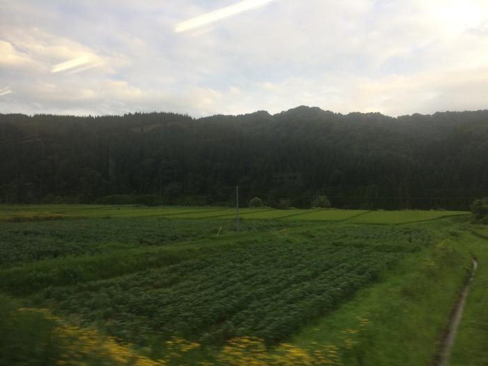 f:id:kawaturu:20171023231023j:plain