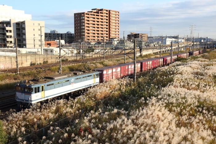 f:id:kawaturu:20171112234510j:plain