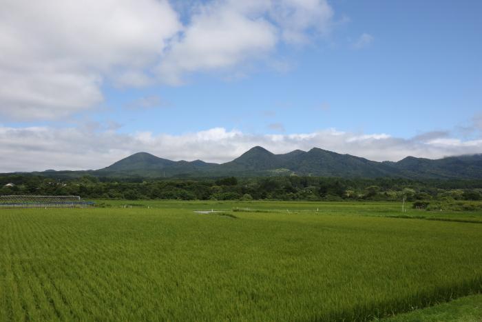 f:id:kawaturu:20171210114939j:plain