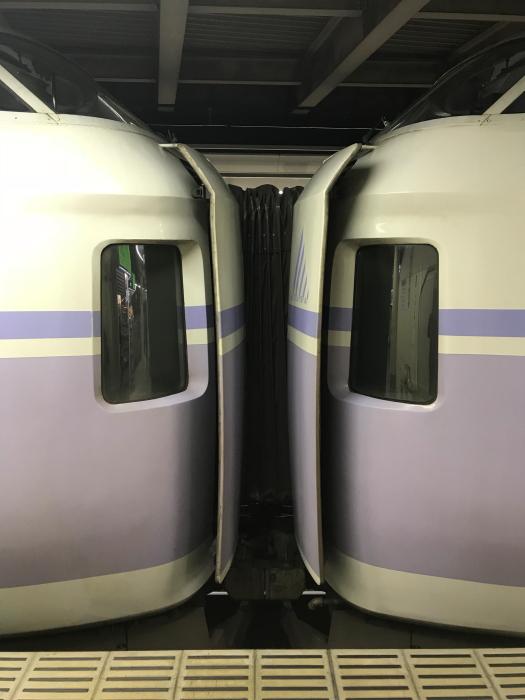 f:id:kawaturu:20171224001750j:plain