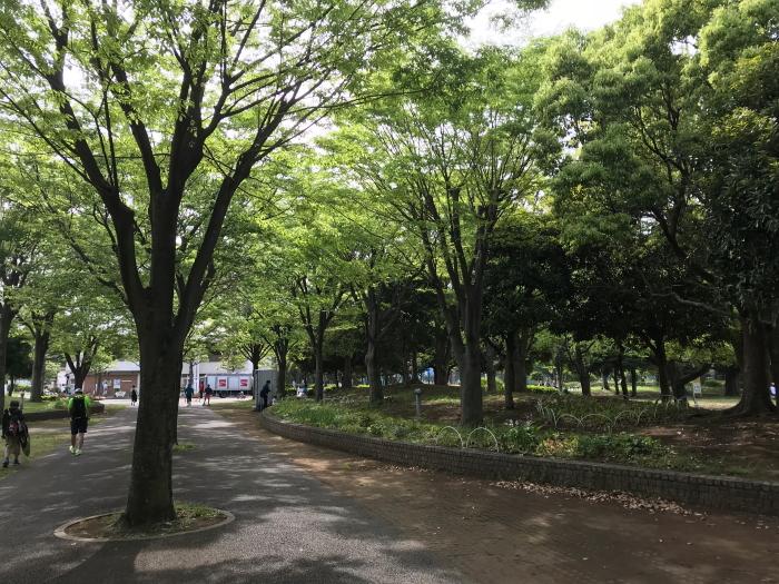 f:id:kawaturu:20180430231731j:plain