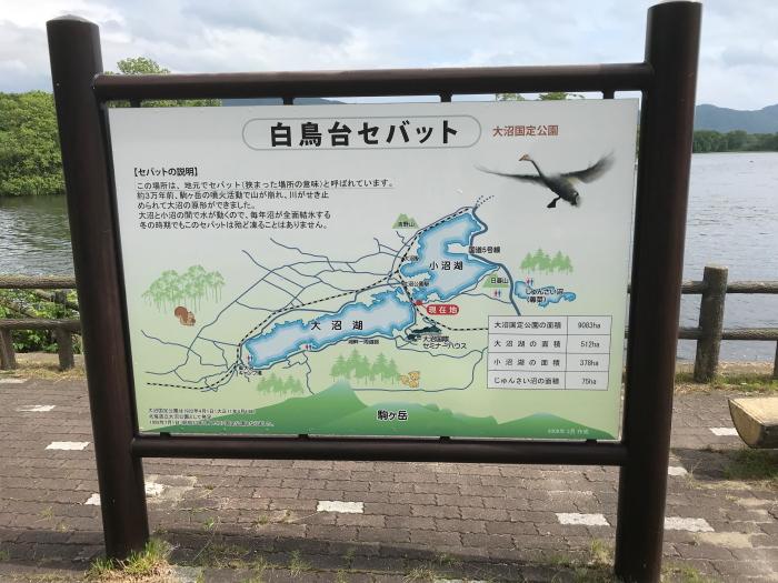 f:id:kawaturu:20180806211401j:plain