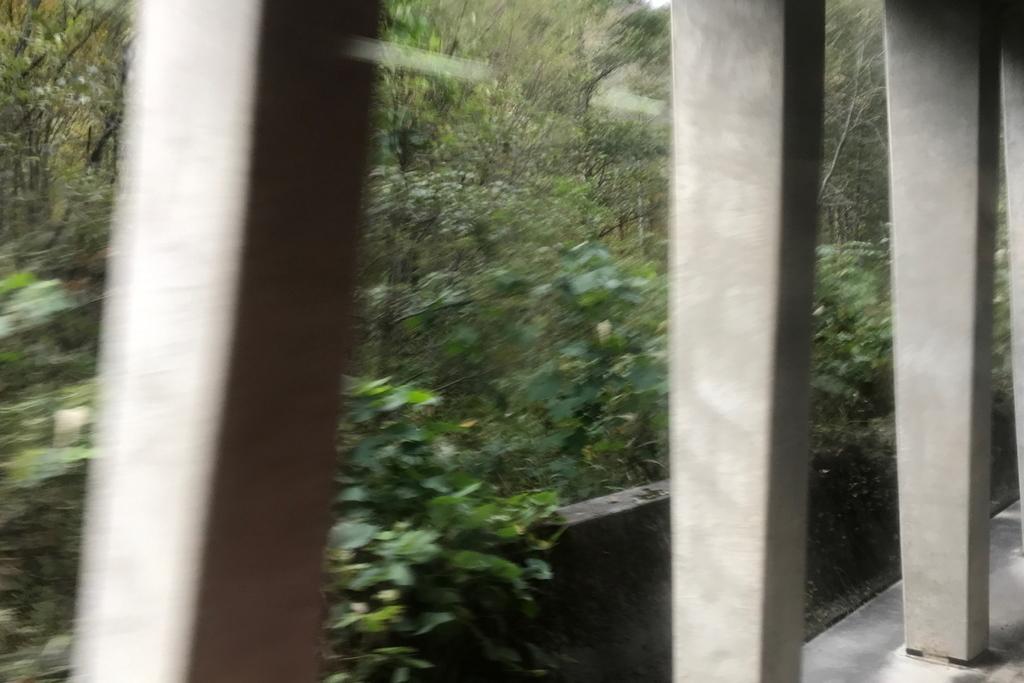 f:id:kawaturu:20181016210545j:plain