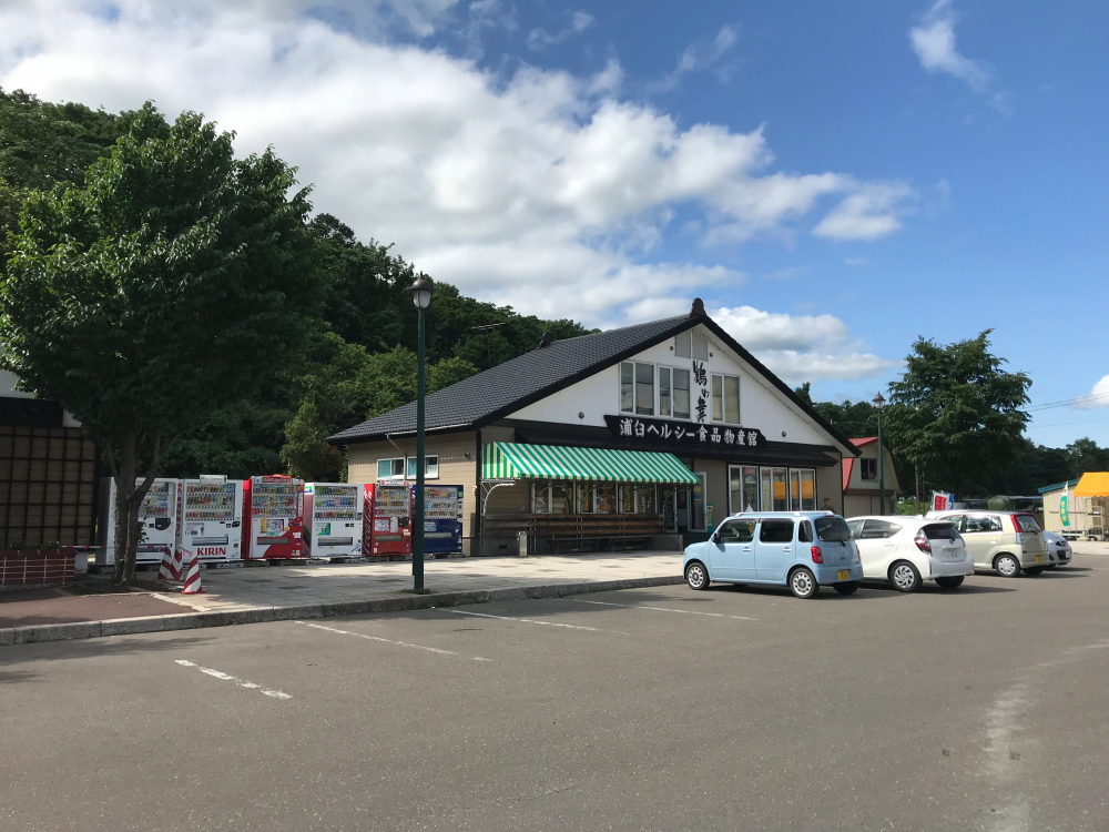 f:id:kawaturu:20190110230739j:plain