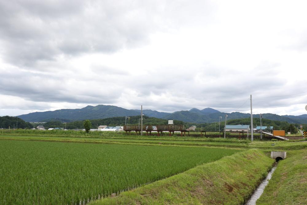 f:id:kawaturu:20190116231151j:plain