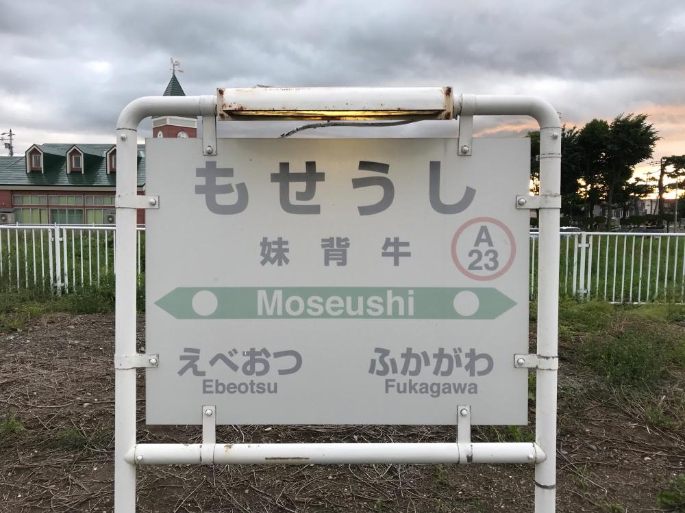 f:id:kawaturu:20190123205701j:plain