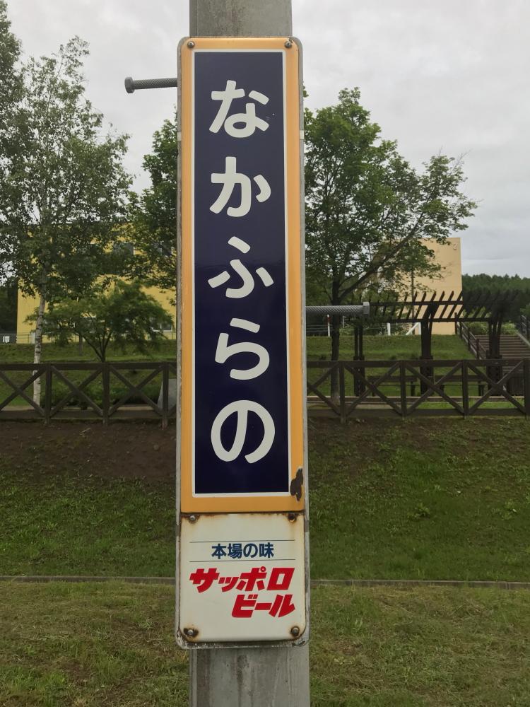 f:id:kawaturu:20190225204503j:plain