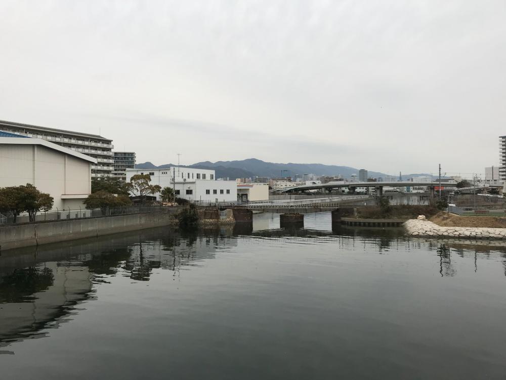f:id:kawaturu:20190320005236j:plain