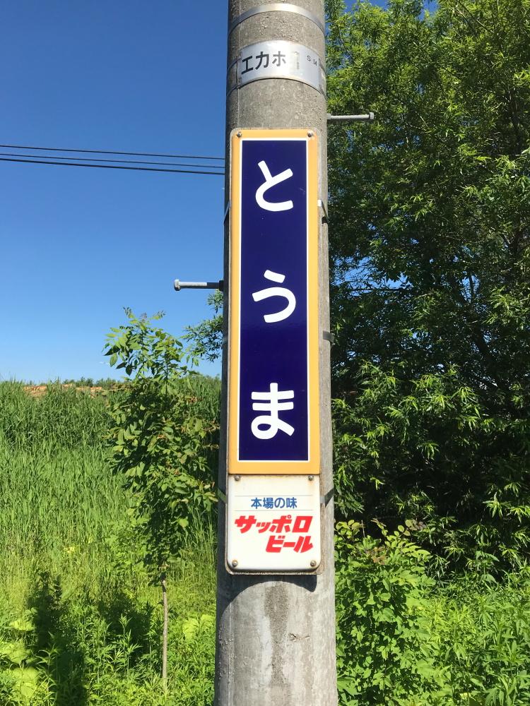 f:id:kawaturu:20190420004047j:plain