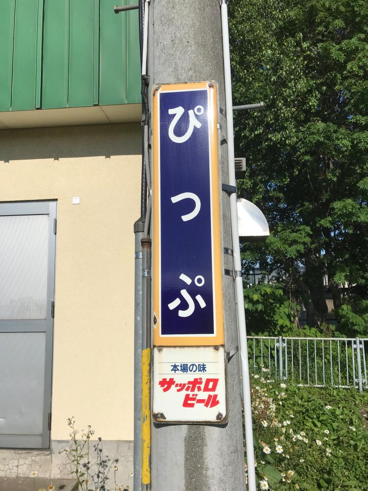 f:id:kawaturu:20190422235628j:plain