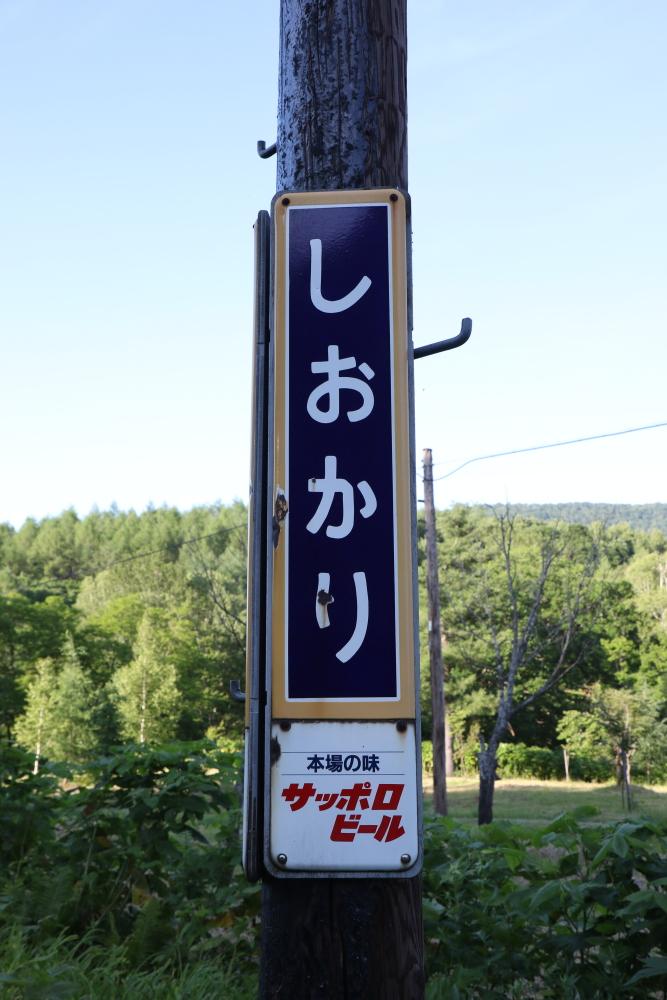 f:id:kawaturu:20190425234115j:plain