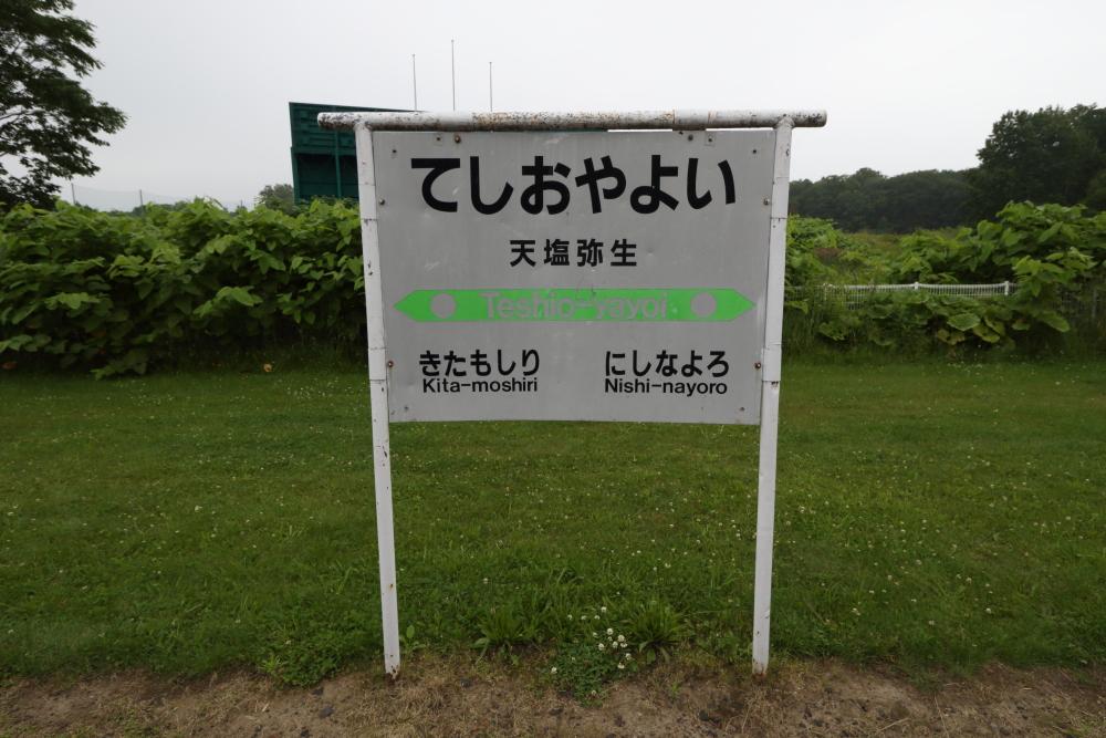 f:id:kawaturu:20190520003423j:plain