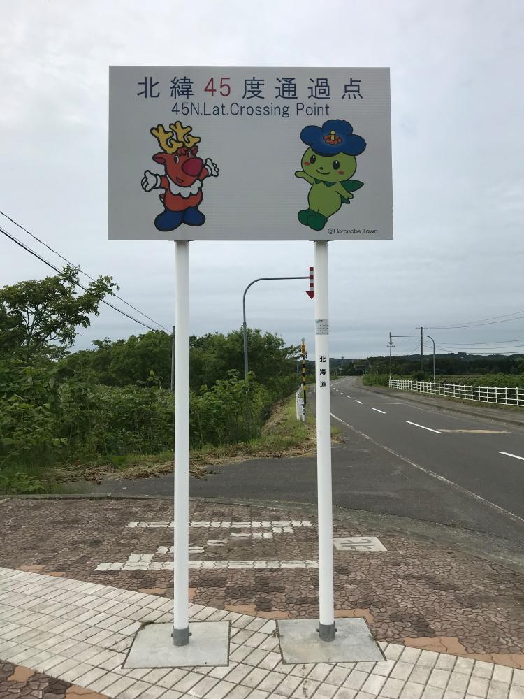 f:id:kawaturu:20190609201651j:plain