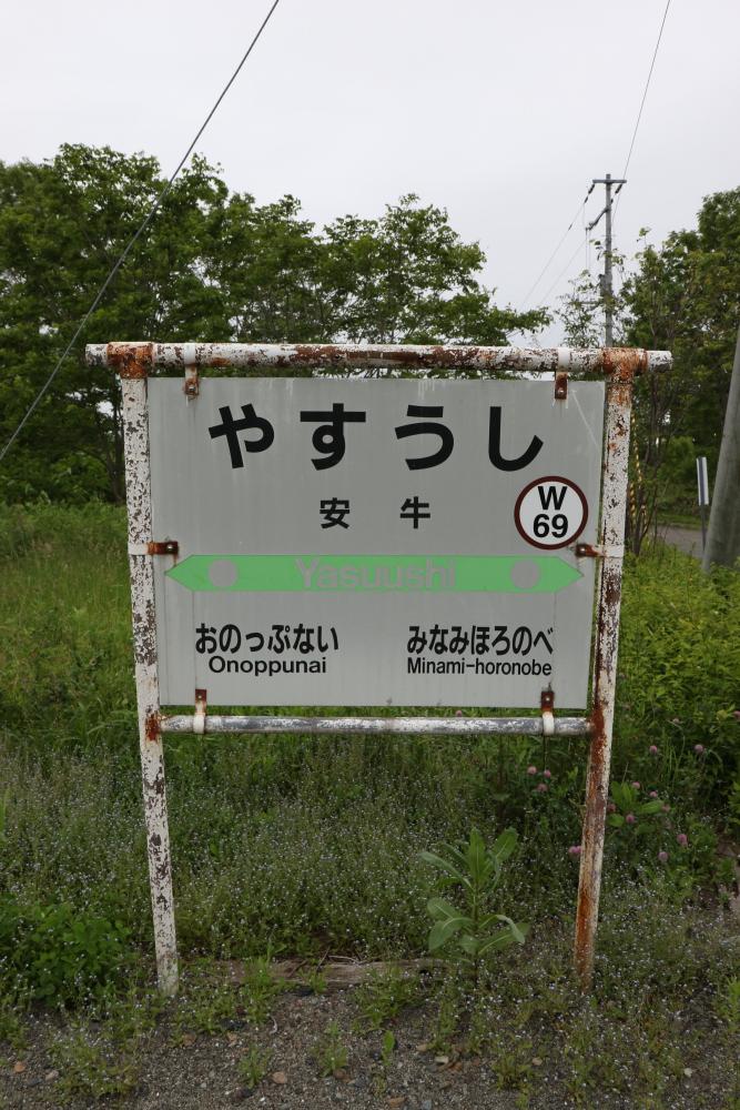 f:id:kawaturu:20190611203049j:plain