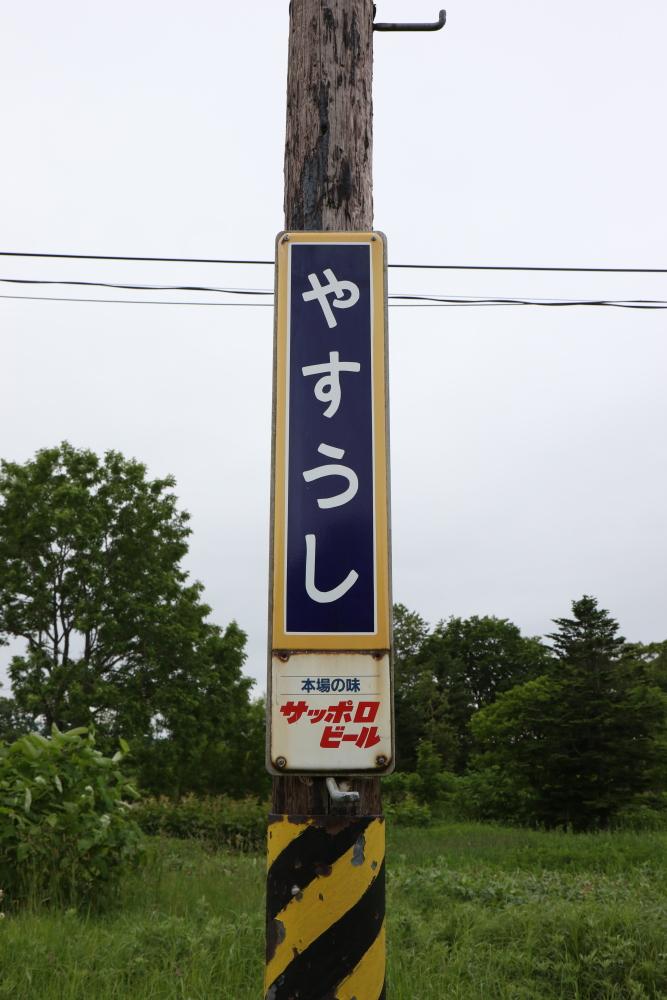 f:id:kawaturu:20190611203105j:plain