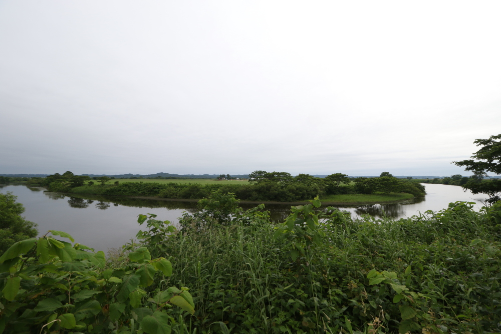 f:id:kawaturu:20190611203929j:plain