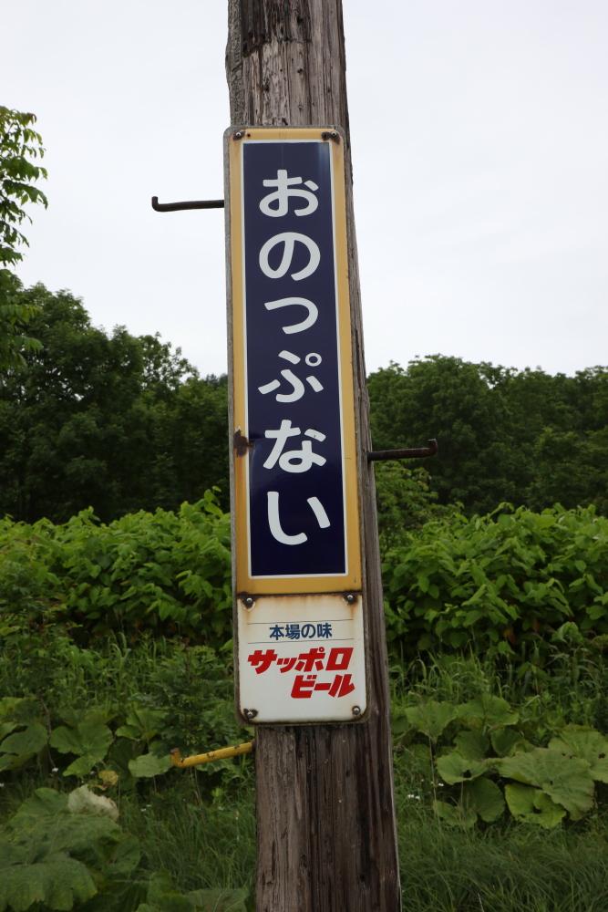 f:id:kawaturu:20190611223501j:plain