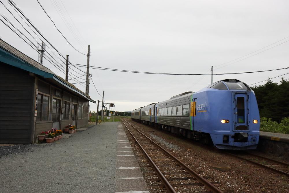 f:id:kawaturu:20190621010856j:plain