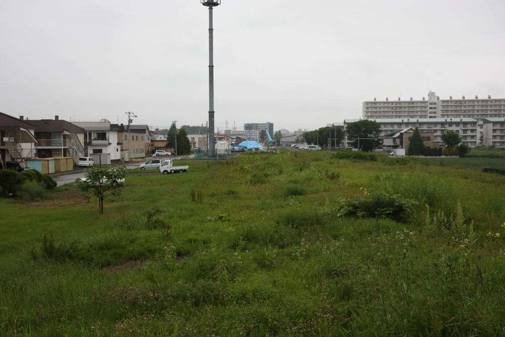 f:id:kawaturu:20190711001752j:plain