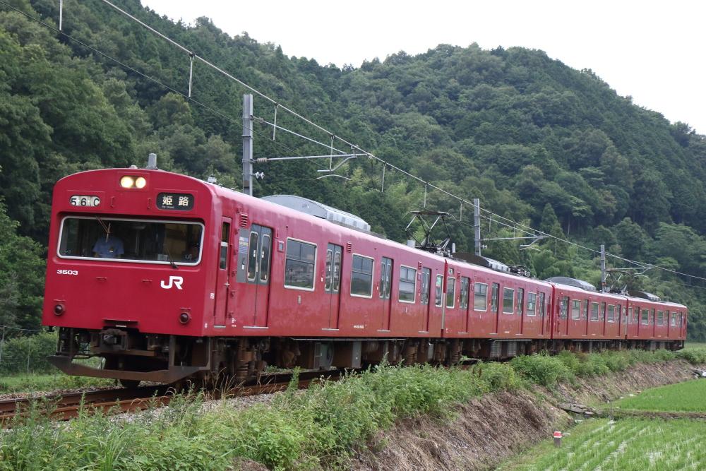f:id:kawaturu:20190720214804j:plain