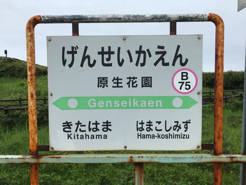 f:id:kawaturu:20190823191758j:plain