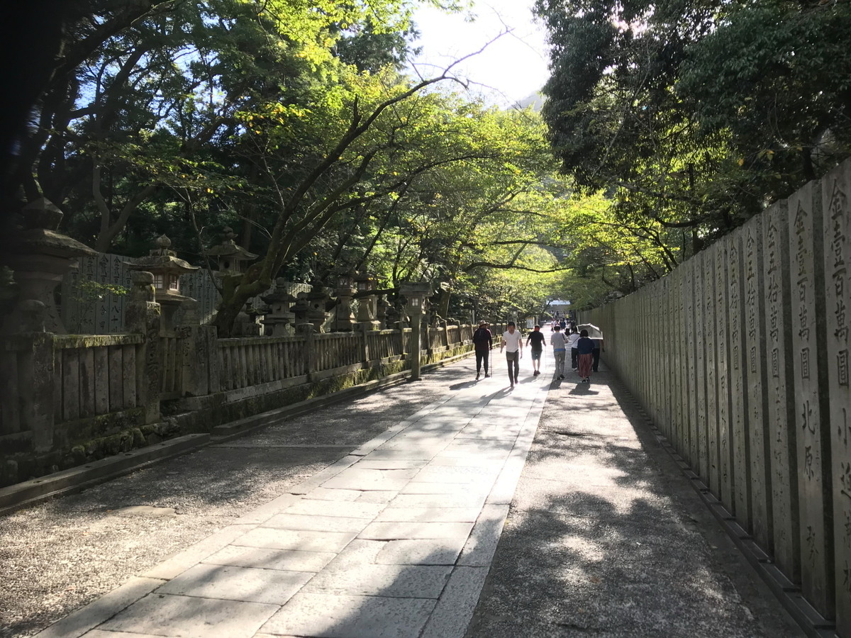 f:id:kawaturu:20200126214216j:plain