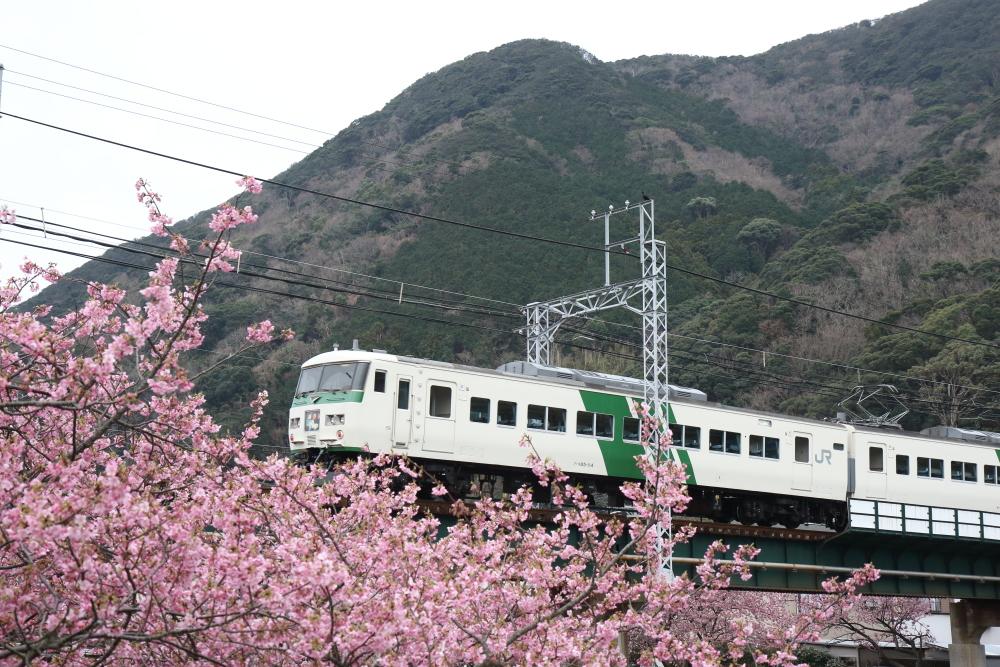 f:id:kawaturu:20200215210321j:plain