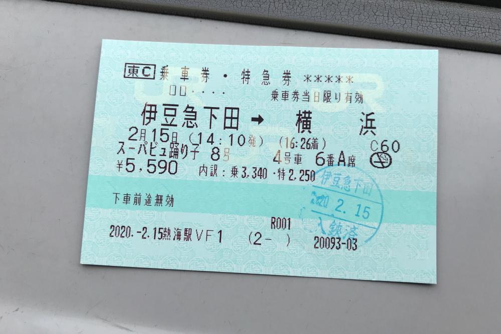 f:id:kawaturu:20200216182217j:plain