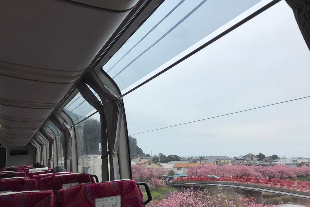 f:id:kawaturu:20200216193947j:plain
