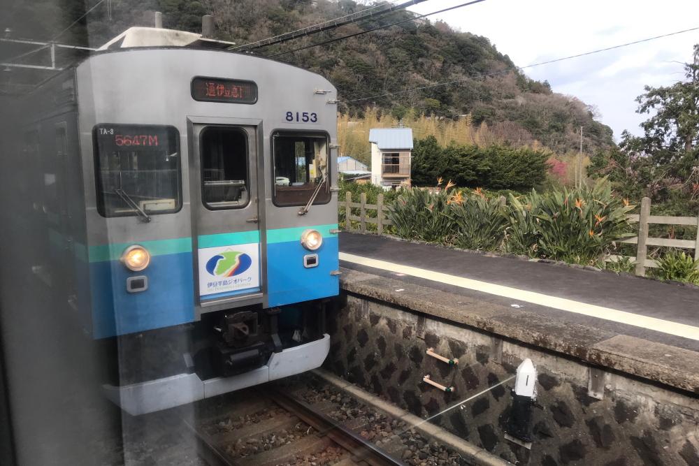 f:id:kawaturu:20200216204715j:plain
