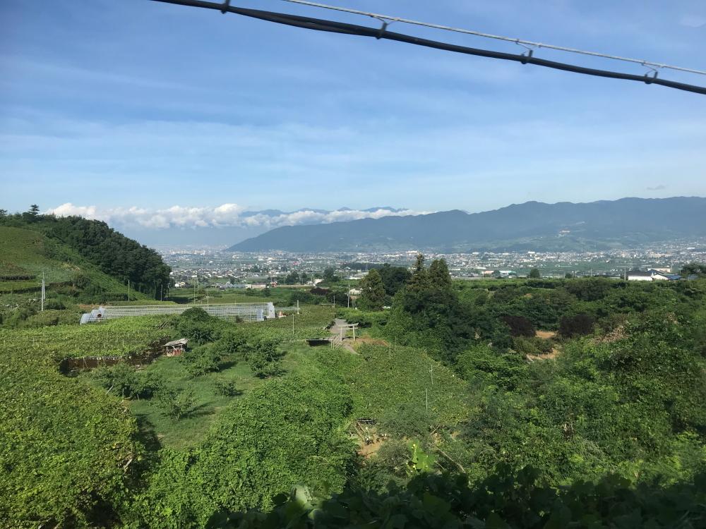 f:id:kawaturu:20200402000030j:plain