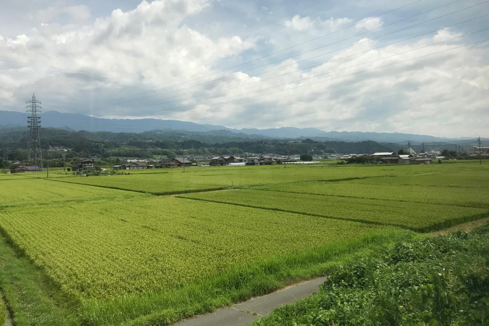 f:id:kawaturu:20200410211643j:plain
