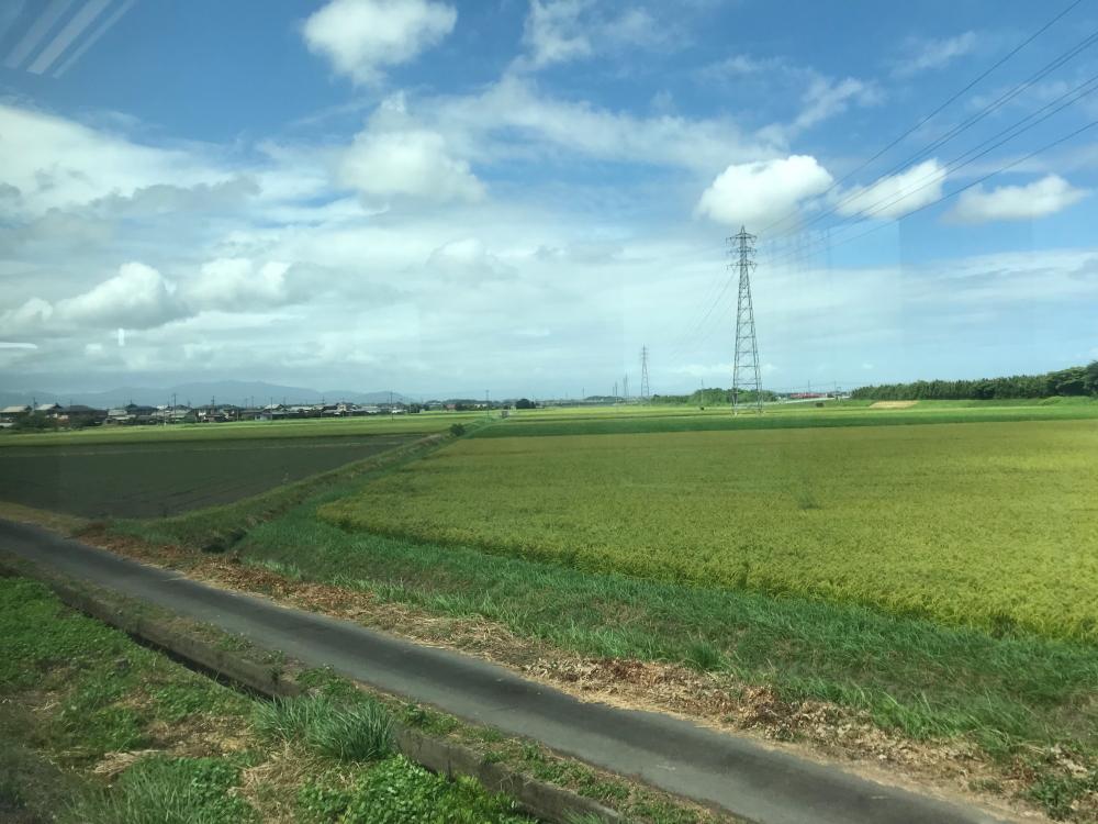 f:id:kawaturu:20200501174051j:plain