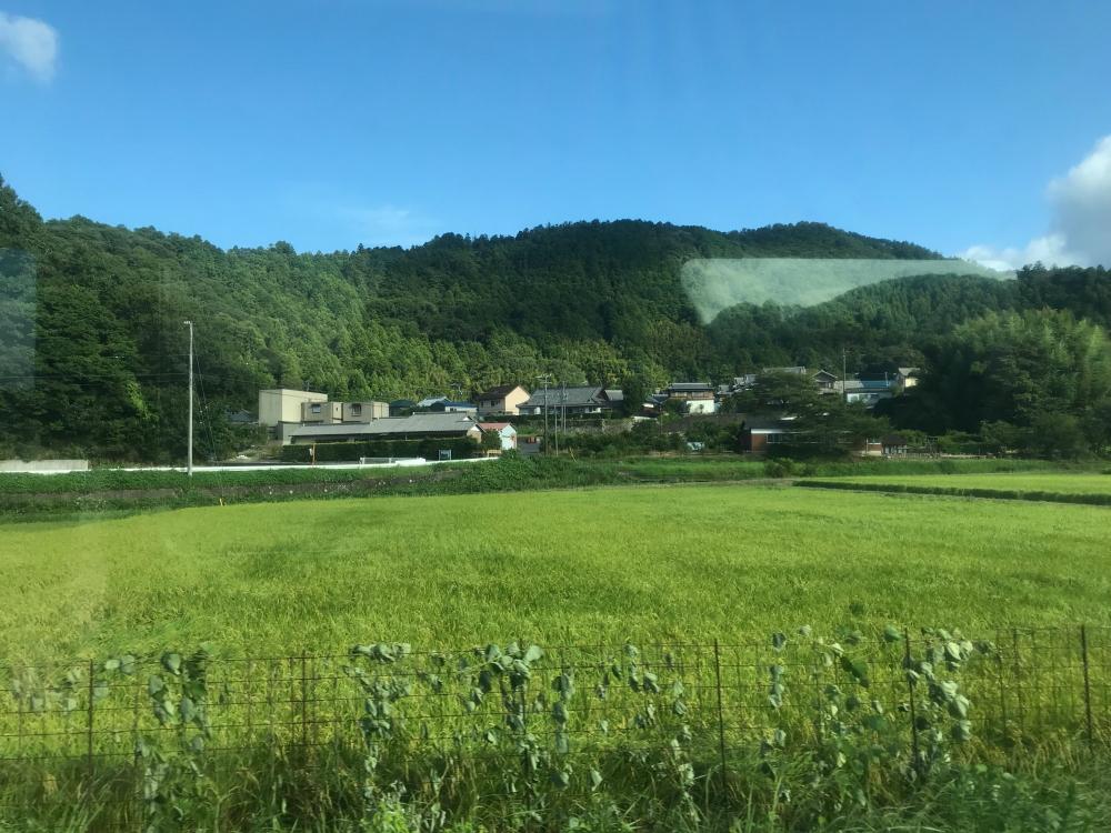 f:id:kawaturu:20200504162630j:plain