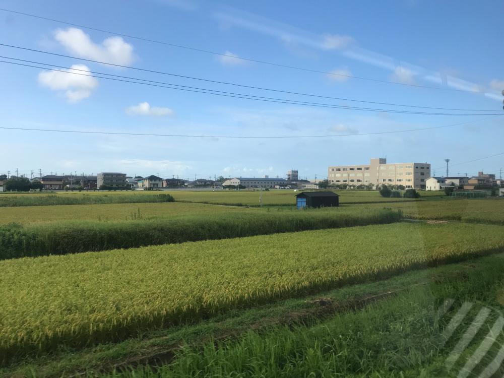 f:id:kawaturu:20200505212417j:plain