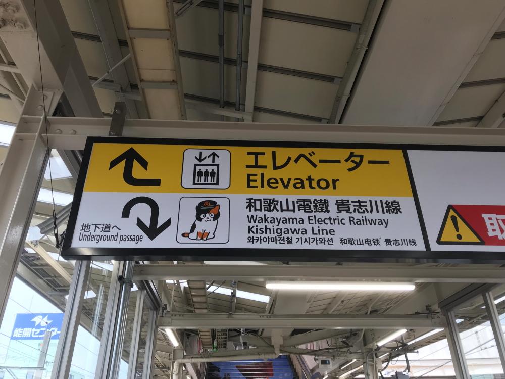 f:id:kawaturu:20200524190735j:plain