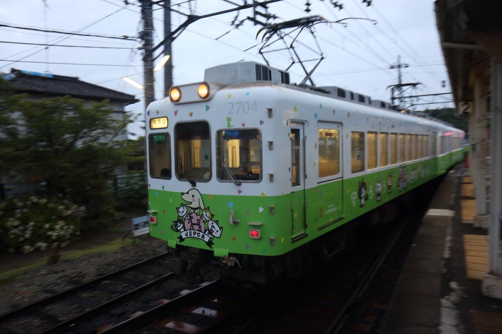 f:id:kawaturu:20200527205044j:plain