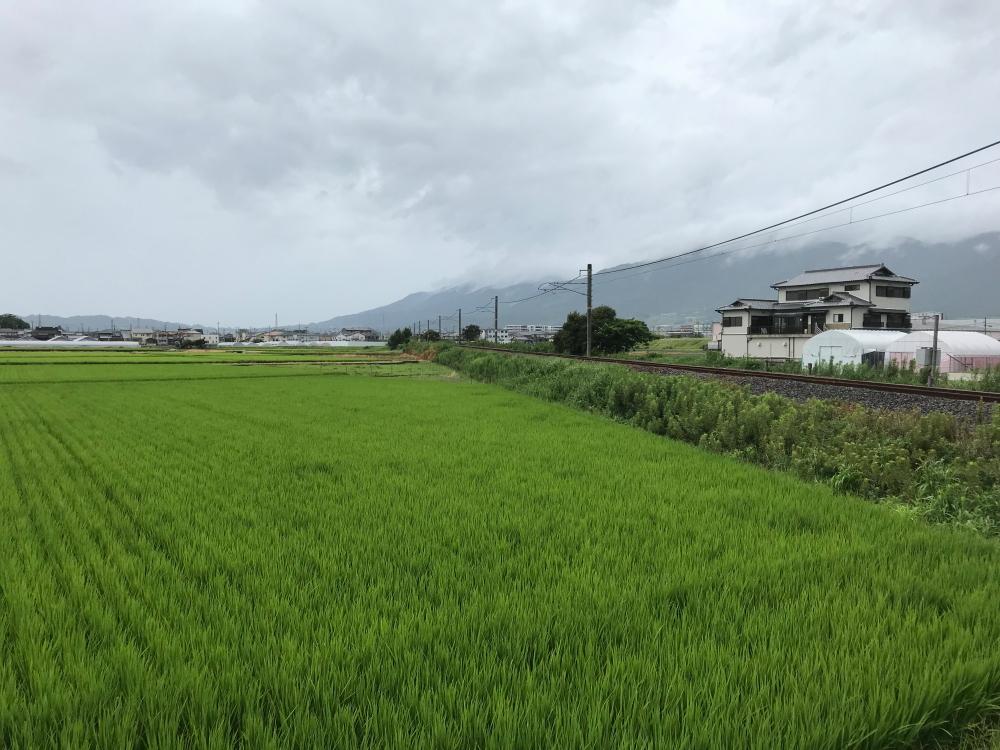f:id:kawaturu:20200611201107j:plain