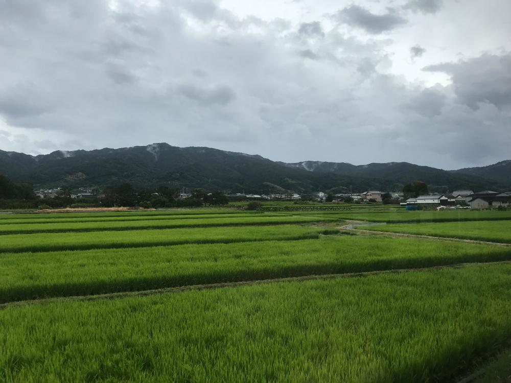 f:id:kawaturu:20200614205514j:plain