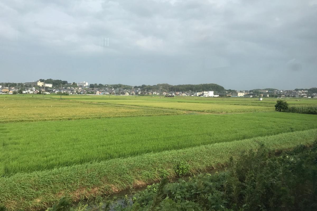 f:id:kawaturu:20200707212102j:plain