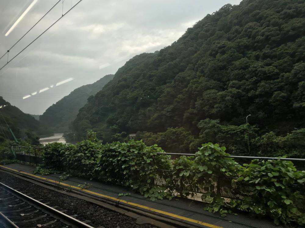 f:id:kawaturu:20200709202207j:plain