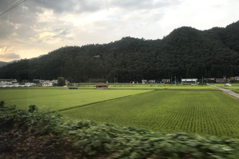 f:id:kawaturu:20200723002826j:plain
