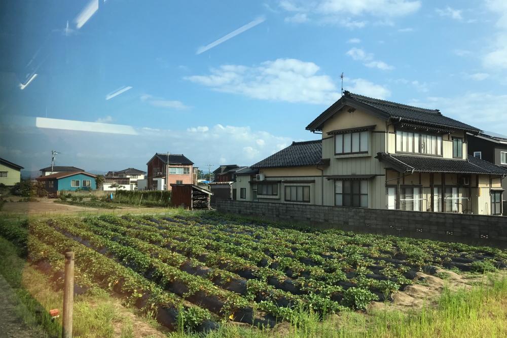 f:id:kawaturu:20200726215120j:plain
