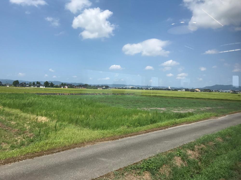 f:id:kawaturu:20200804204816j:plain