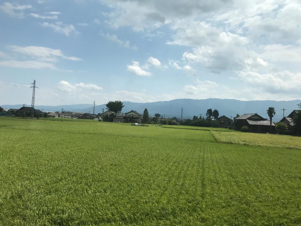 f:id:kawaturu:20200804205347j:plain