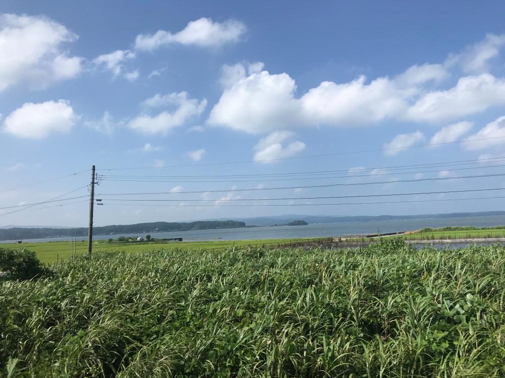 f:id:kawaturu:20200808210201j:plain