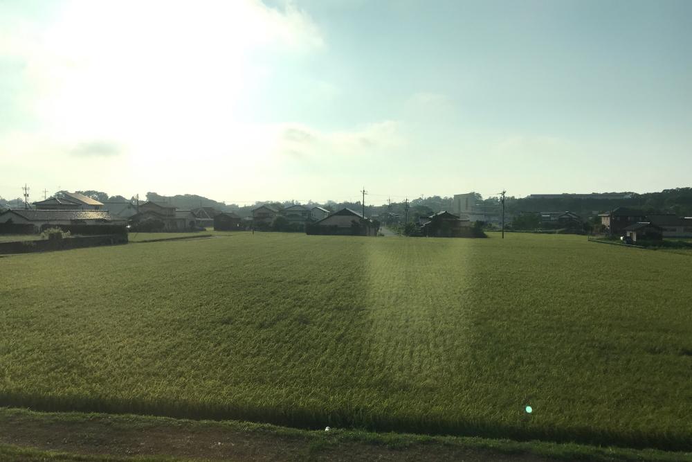 f:id:kawaturu:20200813212331j:plain